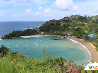Top 5 Lookouts in Tobago