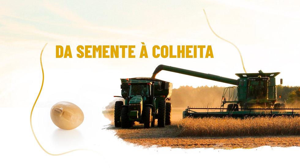 Case Imea, Buenas Artes - Agência de publicidade - Cuiabá-MT