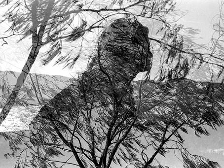 Fotógrafo Analógico #1: Fabrício Finardi (SC)