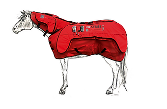 ProSeries 3 in 1 PEMF blanket by sport innovations