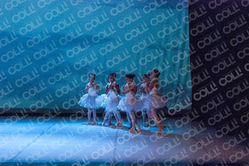 Bailarinas da Neve 35