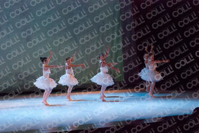Bailarinas da Neve 16