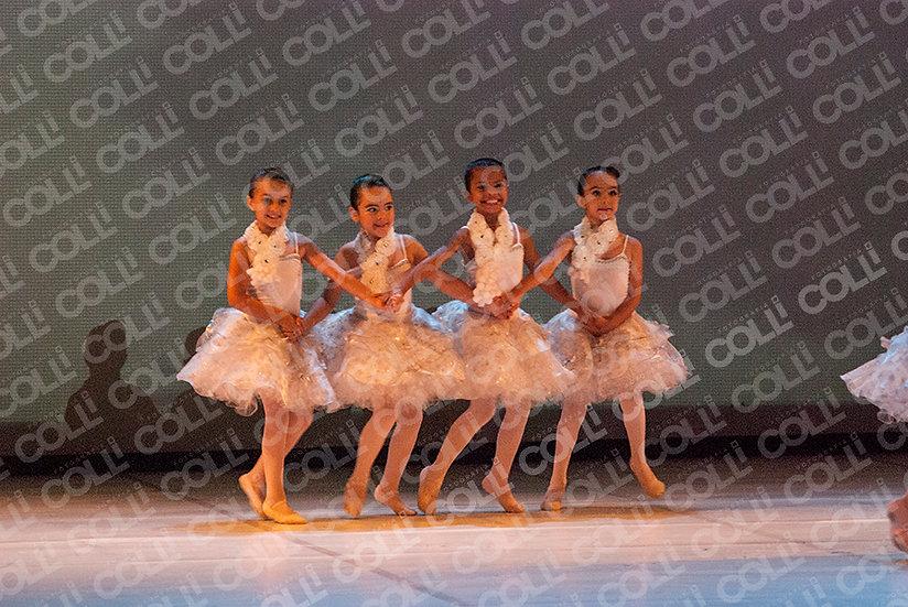 Bailarinas da Neve 10
