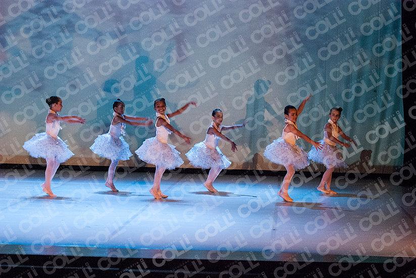 Bailarinas da Neve 39
