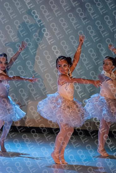 Bailarinas da Neve 40