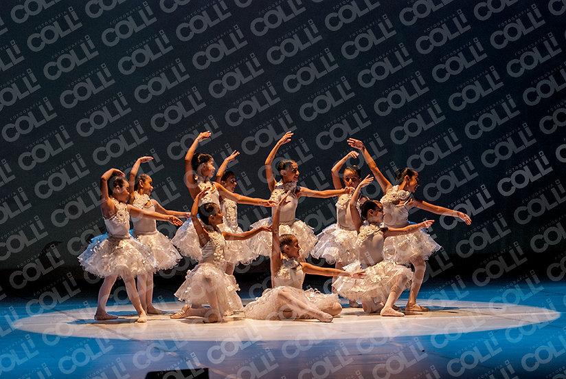 Bailarinas da Neve 26