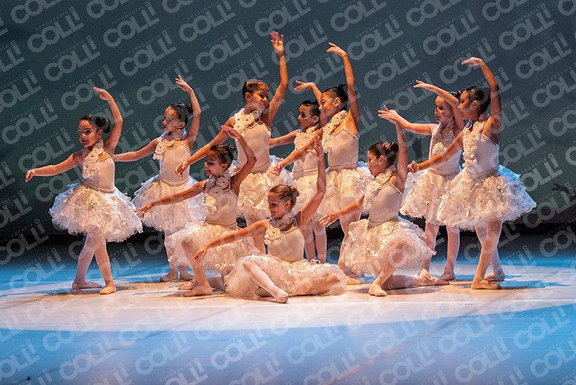 Bailarinas da Neve 53