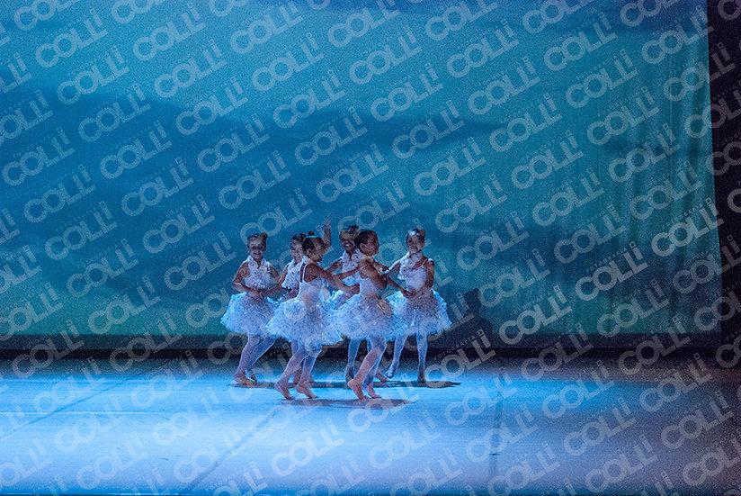 Bailarinas da Neve 33
