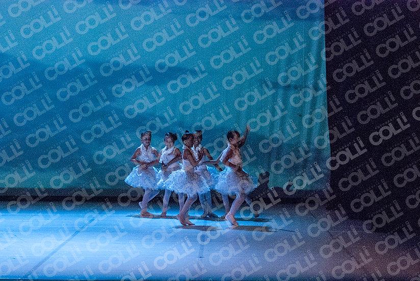 Bailarinas da Neve 34