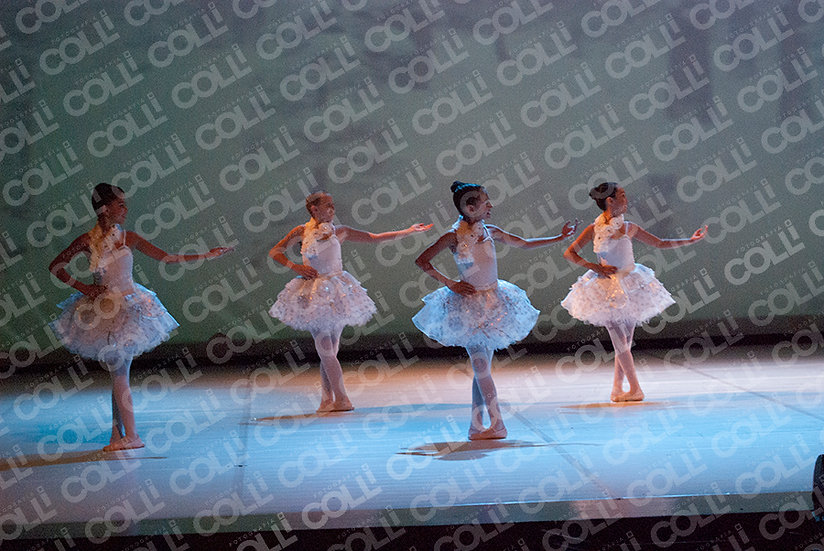 Bailarinas da Neve 15