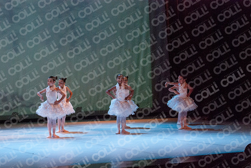 Bailarinas da Neve 14