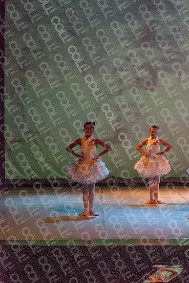 Bailarinas da Neve 12