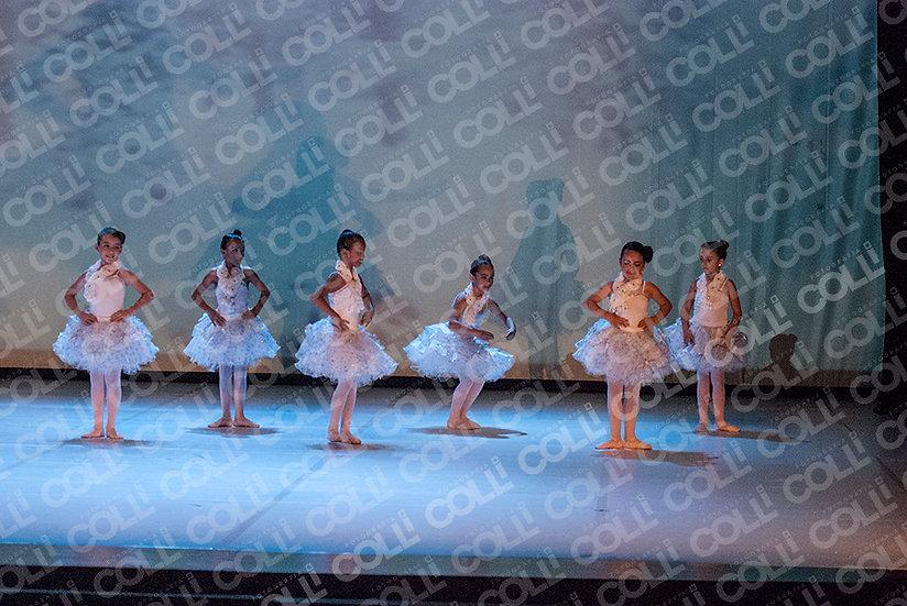 Bailarinas da Neve 38