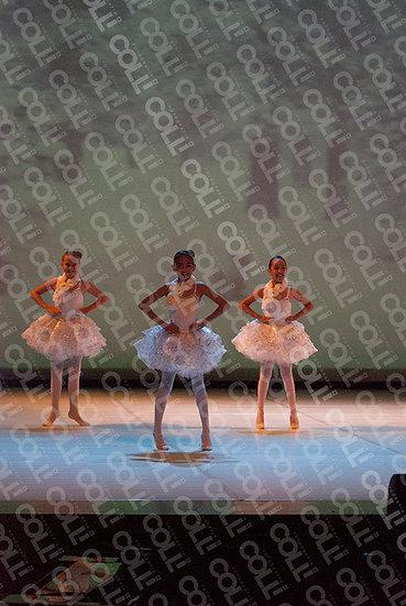 Bailarinas da Neve 13