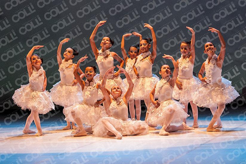 Bailarinas da Neve 48