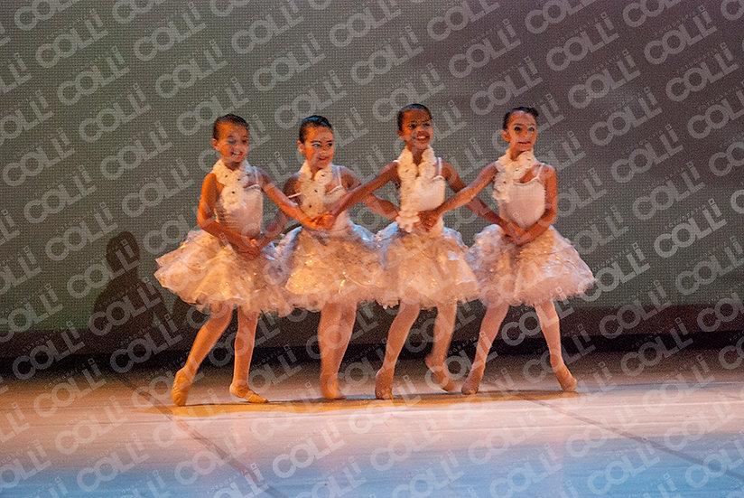 Bailarinas da Neve 09