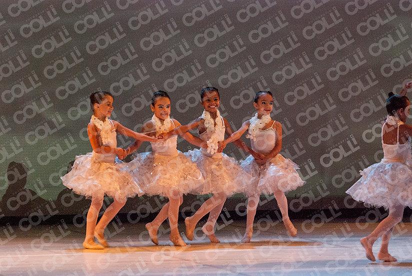 Bailarinas da Neve 11