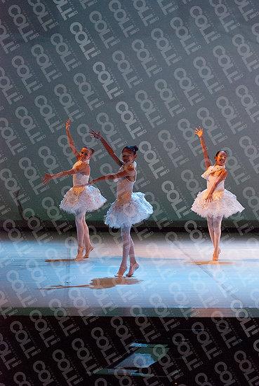 Bailarinas da Neve 17