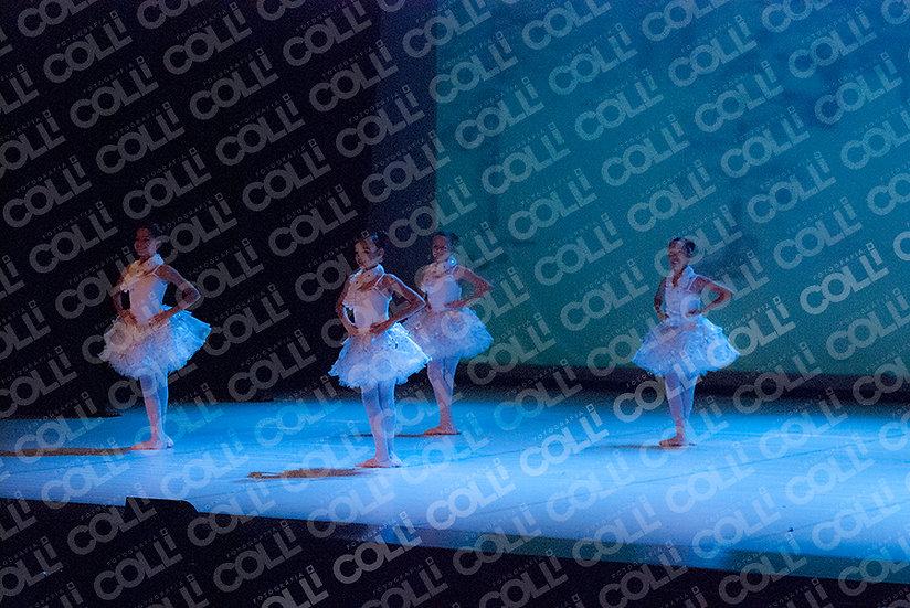 Bailarinas da Neve 36