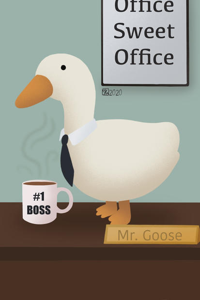 Office Goose
