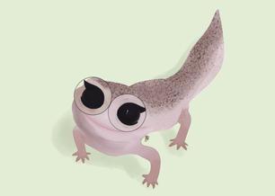 Realistic Gecko