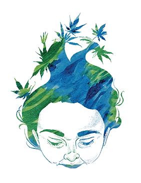 Heylo Cannabis