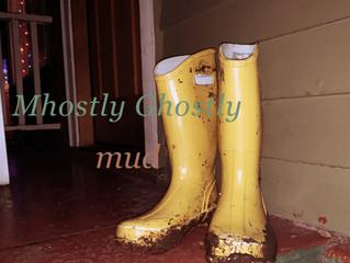"Premiere: Mhostly Ghostly - ""mud"""