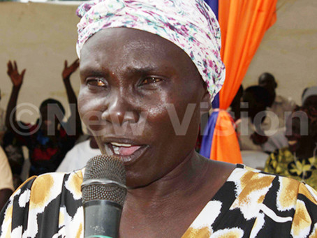 New Vision Article - Ugandans urged to support government fight fistula