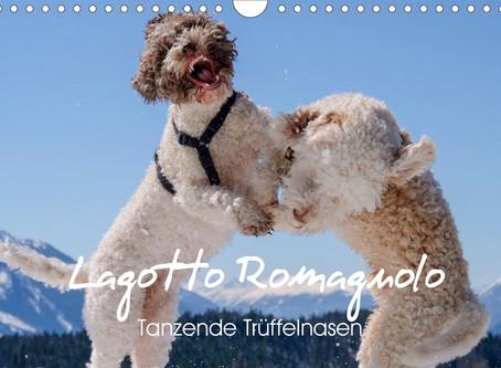 Lagotto Romagnolo Calendars // Wuffclick-pic EUROPE editions