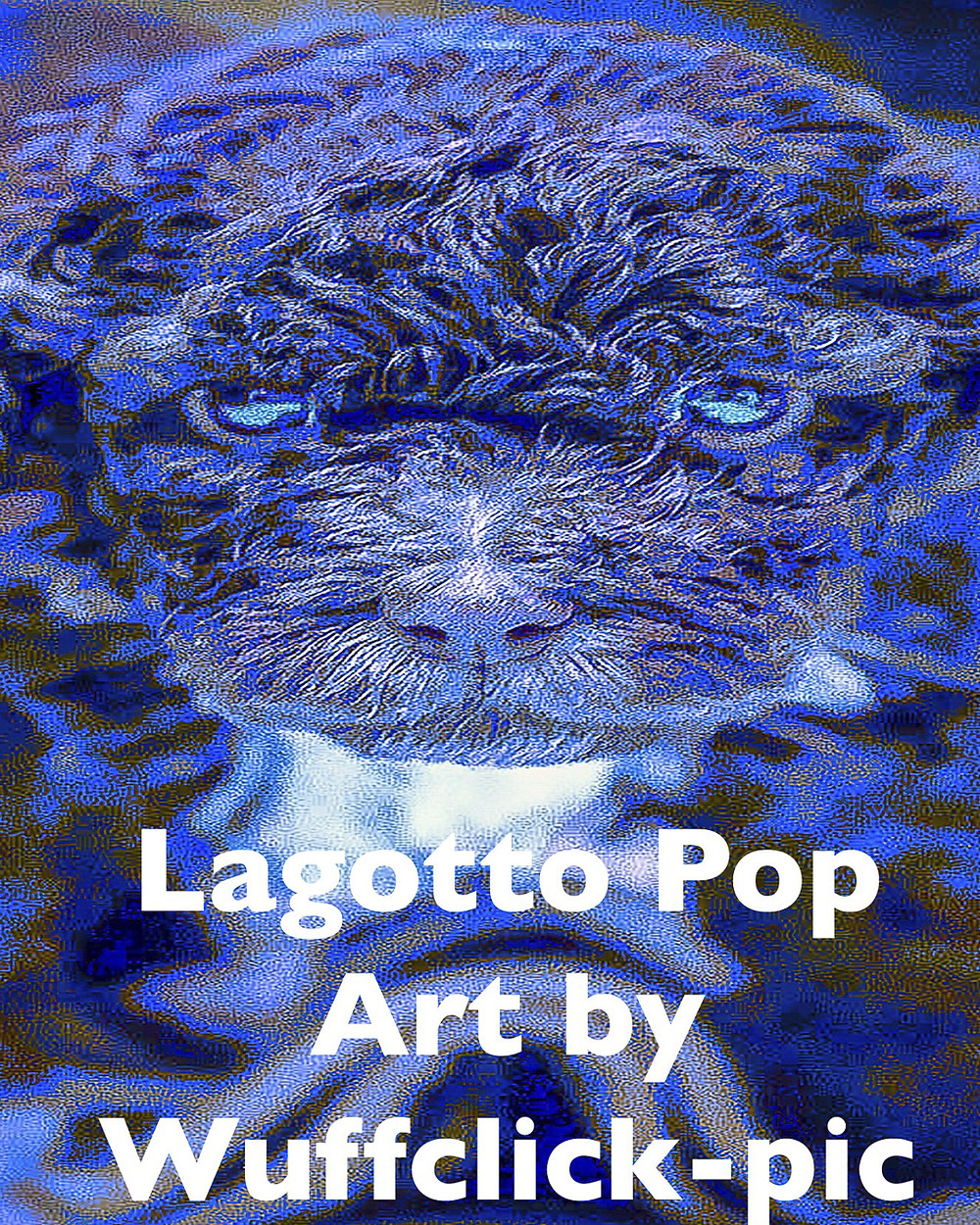 10 year old puppy starring in our US Lagotto Pop Art Calendar