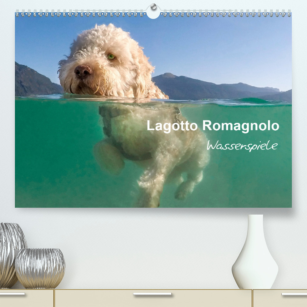 Includes our first half water shots. The Lagotto Romagnolo is a water dog, with this calendar we celebrate the joy they have in and around water.