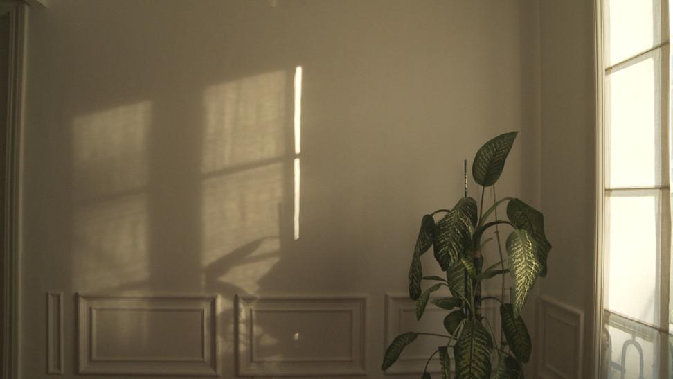 Encierro Sombras chinas.jpg
