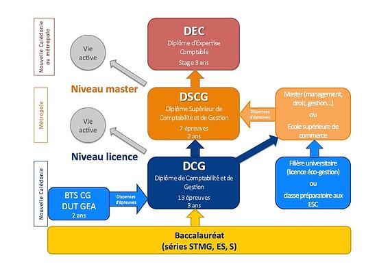 schéma_etudes_dcg_dscg_dec_site_internet
