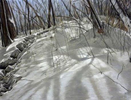 thumbnail_LindaGrossBrown-Footsteps5.jpg
