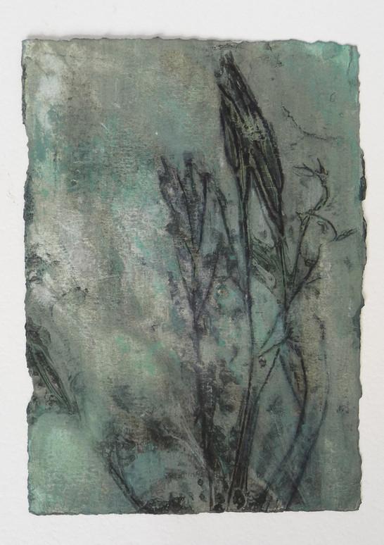 #8 Gelatine print, caseïn on paper, 21x14,85cm framed: 24x30cm 2017