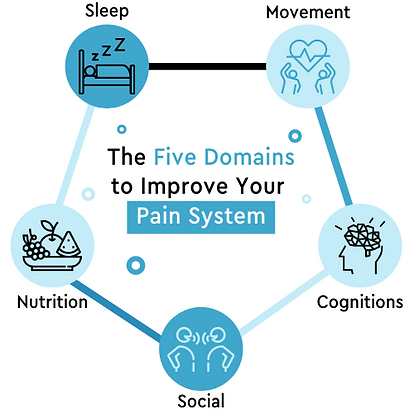 Copy of 5 Domains website graphic.png