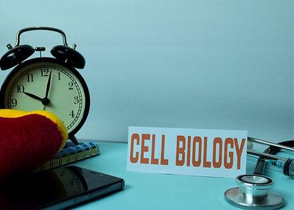 Cell biology and fibromyalgia.jpg