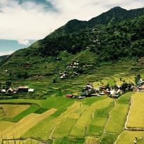 Terrace Farming in Phillippines