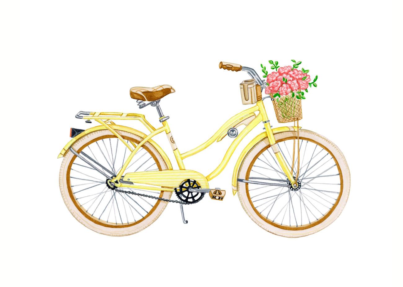 HomePageHorizontlBycicle.jpg