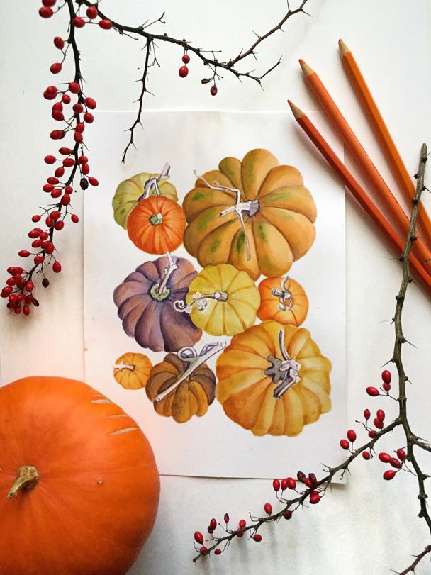 Fall-inspired Illustrations
