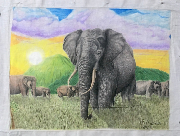 Elephants by Rayfel Zumar Bell
