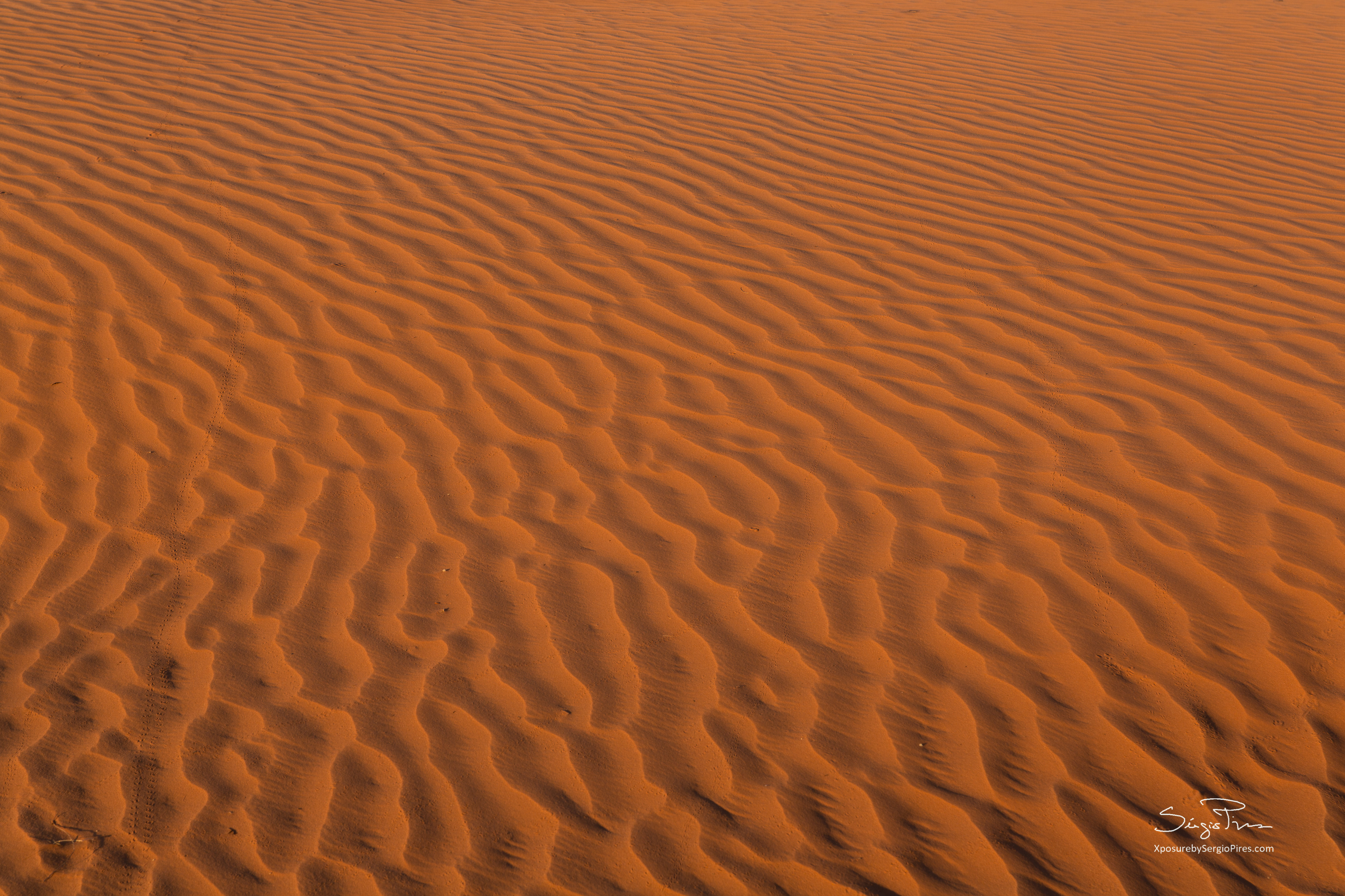 Sand rippels