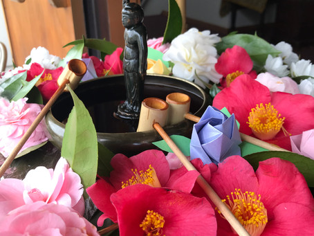 Happy Birthday, Shakyamuni Buddha!