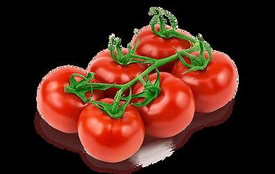 tomato-vegetarian-cuisine-pizza-organic-
