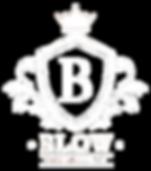 Blow_Logo_white.png