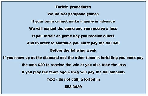 Mile Sports | Buffalo, NY | Softball League Forfeit Procedures
