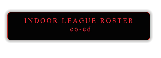 Indoor co-ed league roster.png