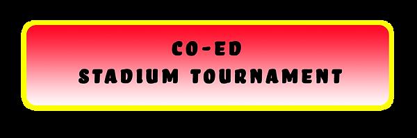stadium tournament.png