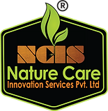 NCIS logo r.png