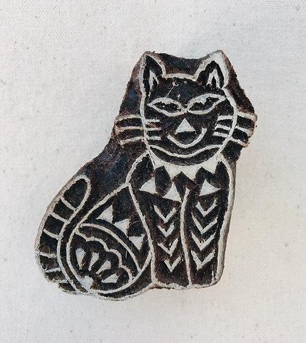 WB415 cat